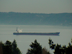 Freighter on Puget Sound.